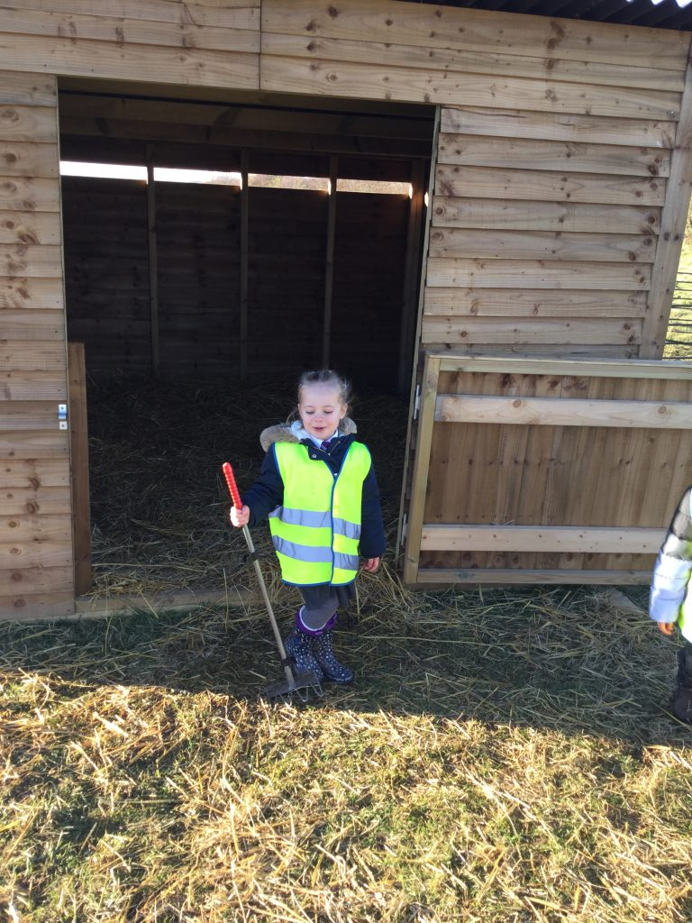EYFS at Thistle Hill Academy on the farm!